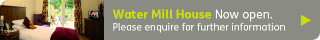 banner_homepage_watermill