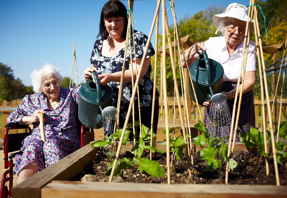 Residents gardening, Alderwood Care Home